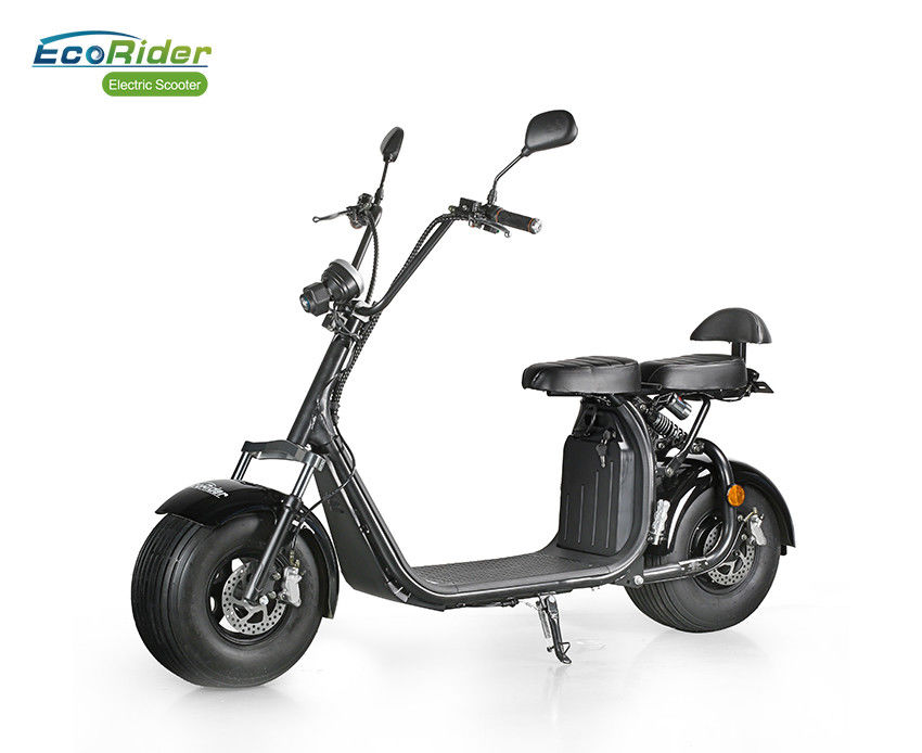 Fat Tire 2 Wheel Electric Scooter With Optional Lithium Battery LT018