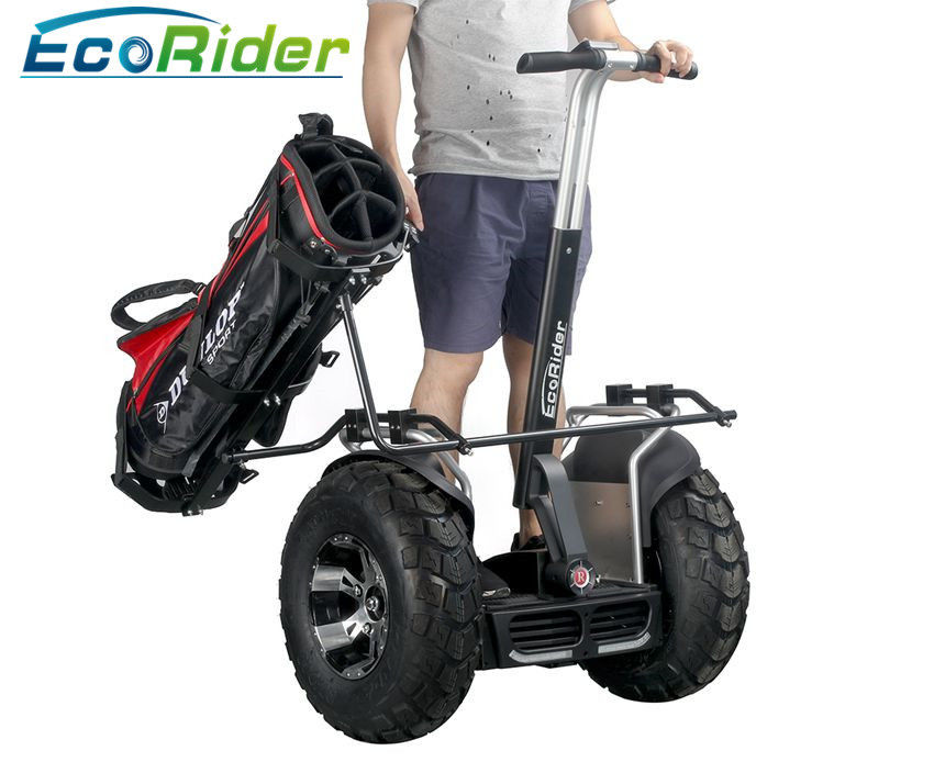 Two Wheels Self Balancing Electric Scooter Balance Scooter 21 Inch Big Tire